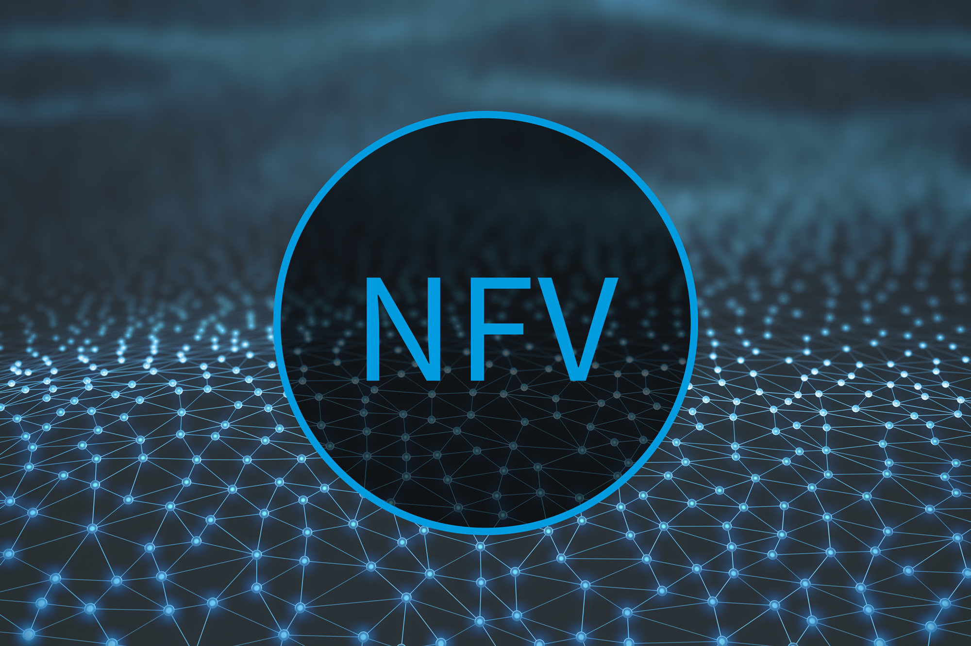 NFV: How it Provides Agility and Rapid Response